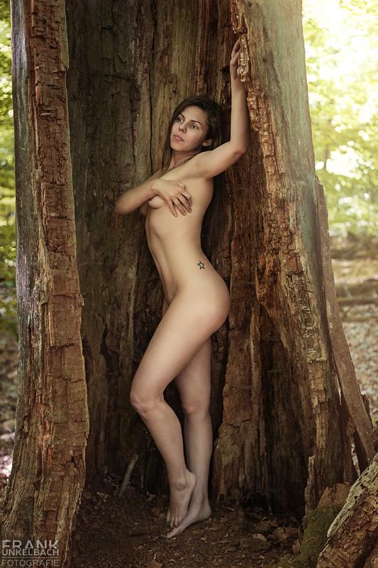Junge attraktive Frau mit langen Beinen steht nackt in einem hohlen Baumstamm und verdeckt sich mit einer Hand die Brüste.