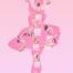 Die Silhouette einer Ballerina in Tutu ist gefüllt mit diversen akrobatischen, sinnlichen und provokanten Aktfotografien.